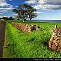 Stone Fence, Yorkshire Dales, England1.jpg