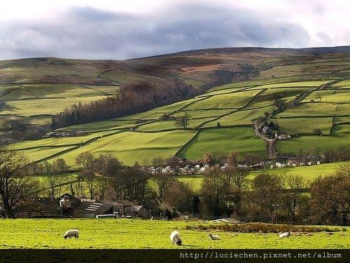 Stone Fence, Yorkshire Dales, England4.jpg