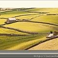 Stone Fence, Yorkshire Dales, England6.jpg