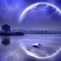 night_reflection.jpg