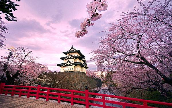 171564__japan-hirosaki-castle-trees-flowering-cherry-flowering-bridge-pond-sky-clouds_p