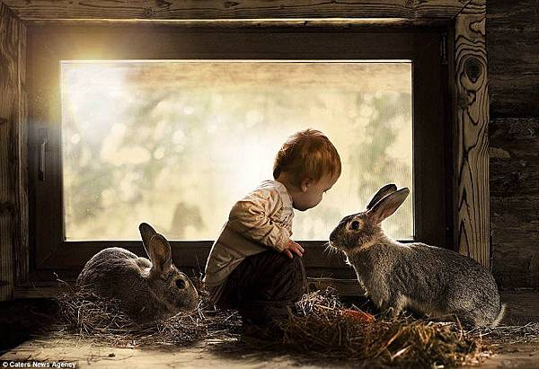 kid-animals-rabbits