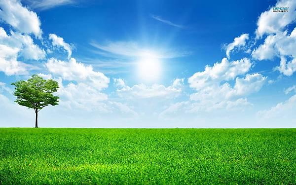 sunny-blue-sky-nature-613787