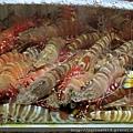 鯉魚門 - 妹記海鮮