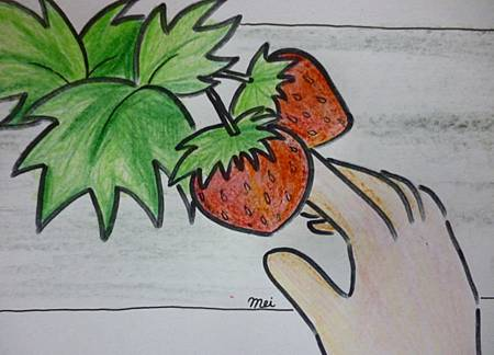 自食莓果1