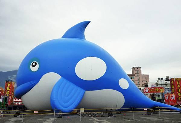 2014  藍虎鯨