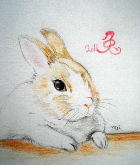 2011~兔年