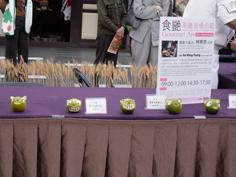彩繪藝術_201臺北國際花卉博覽_文化館果雕大師示範01.JPG
