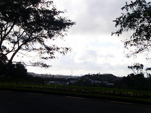PIC_0096.jpg