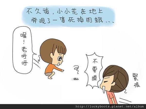 老呼呼的可憐故事03