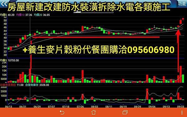 stock13.jpg