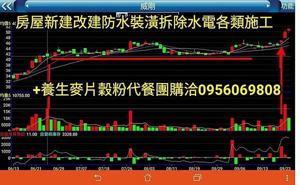 stock16.jpg