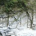 整條溪谷奇岩怪石
