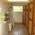 洗手間也種花花草草