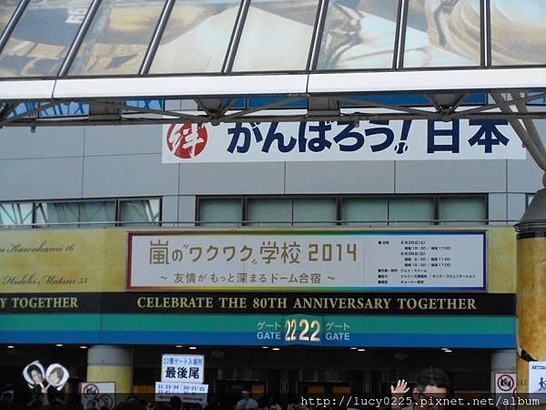 2014.06.29-61.JPG