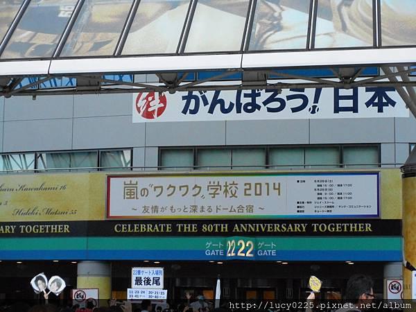 2014.06.29-62.JPG