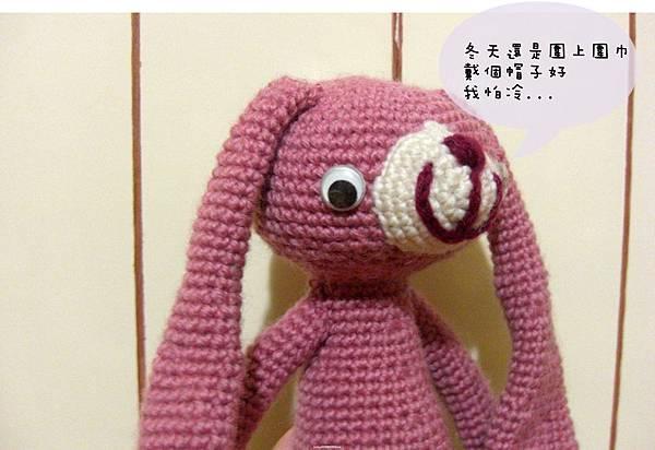 戴帽時尚兔兔