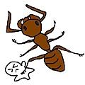 螞蟻都欺負小波肥啦..ˊˋ