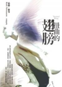 2007年《扭曲的翅膀》.jpg