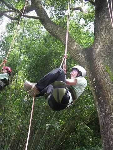 爬樹--海金沙05