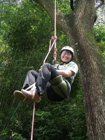 爬樹--海金沙04