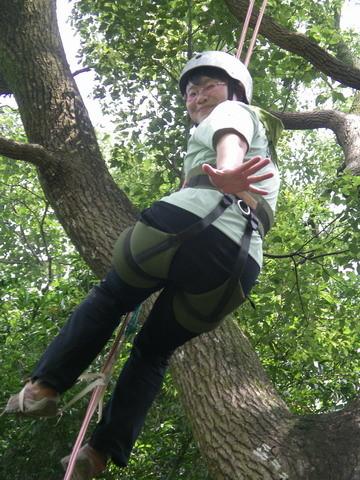爬樹--海金沙06