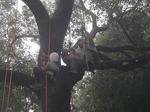 爬樹--海金沙24