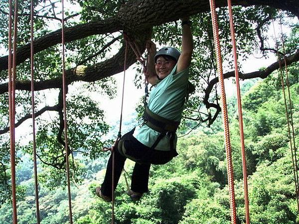 爬樹--海金沙31