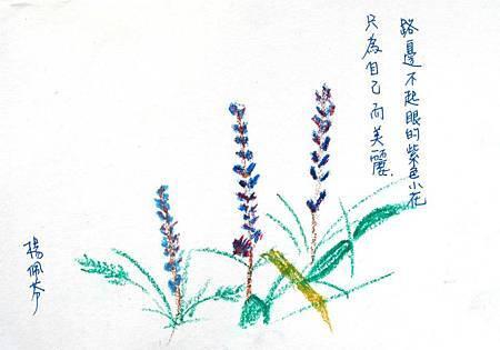 01楊佩芬-31