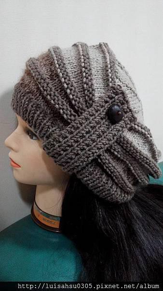 盤形帽1.JPG
