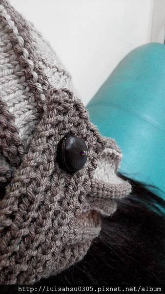 盤形帽3.JPG