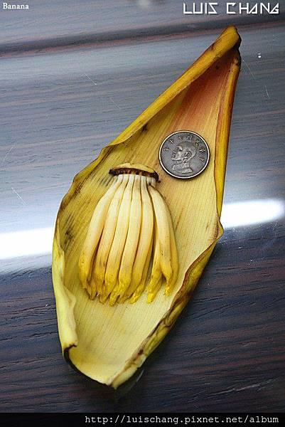 banana (7).jpg