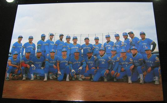 明信片-虎B.bmp