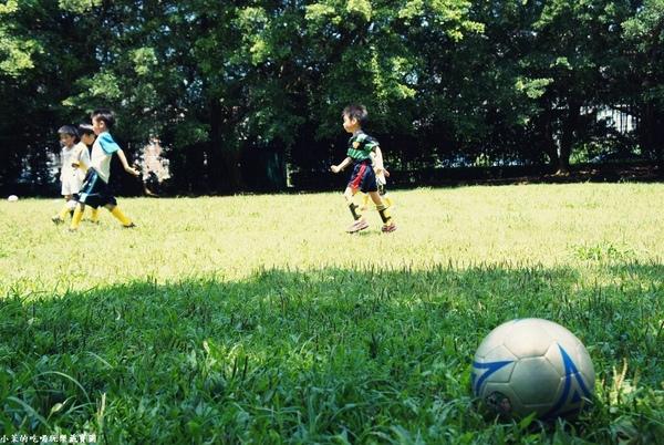 滬尾砲台公園:【台北】廣闊草皮大到能踢足球@滬尾砲台公園