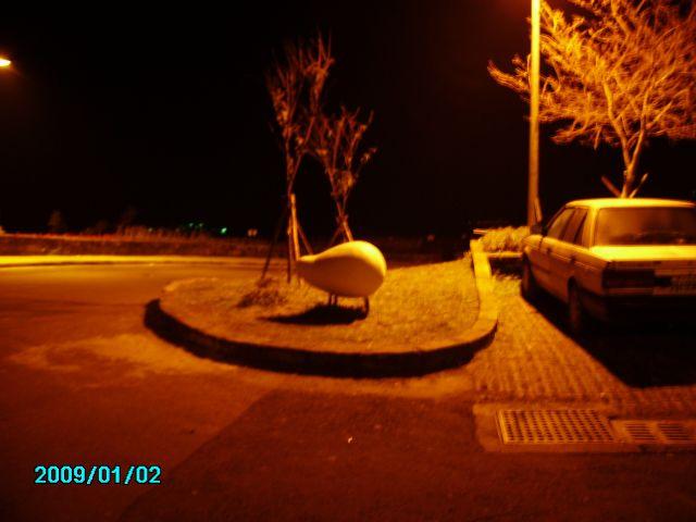 PICT3801.jpg