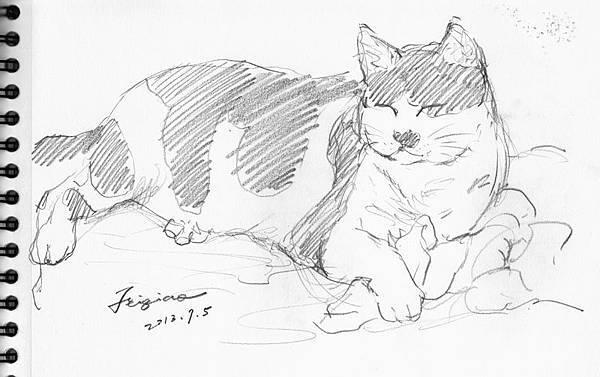 lulicat-sketch-small