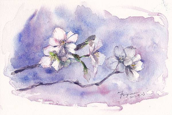 sakura-small