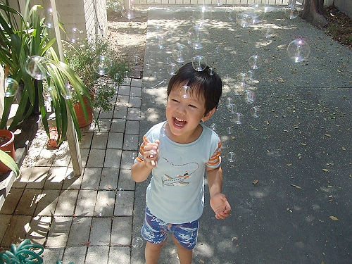 後院玩泡泡
