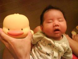 爸比說我跟小鴨一樣呆