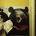 熊的眼睛是捲桶衛生紙