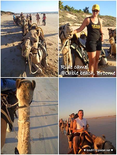 camel ride2.jpg
