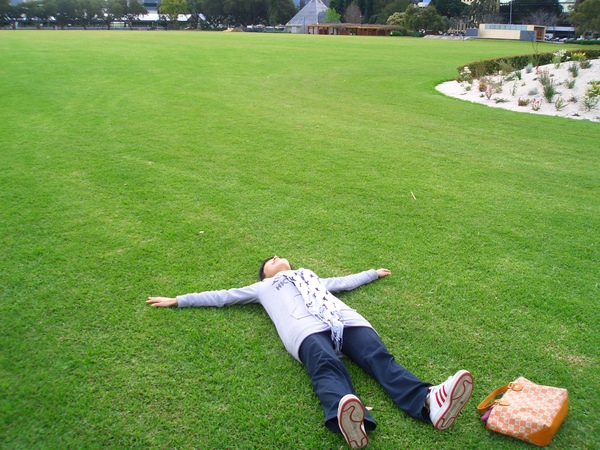 天呀一大片草地