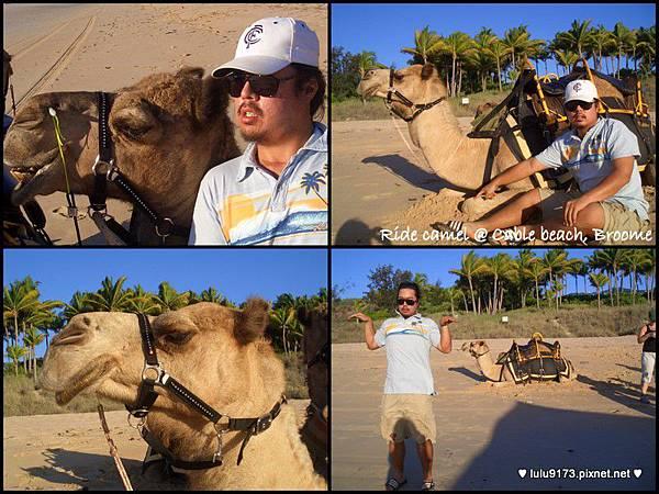 camel ride1.jpg