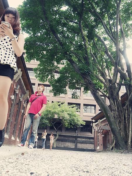 2014-07-12-16-30-59_deco.jpg