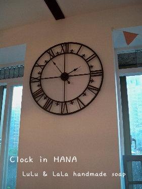 HANA11.jpg