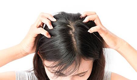 換季掉髮、頭皮問題多?樂美專業健髮:頭皮養護工作不能少