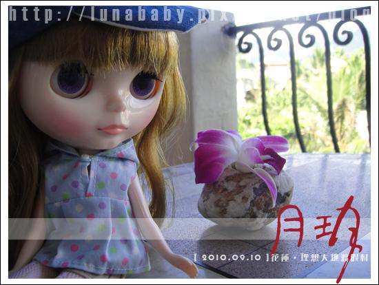 20100909花蓮理想大地04.jpg