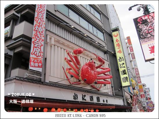 20111106-36道頓堀.jpg