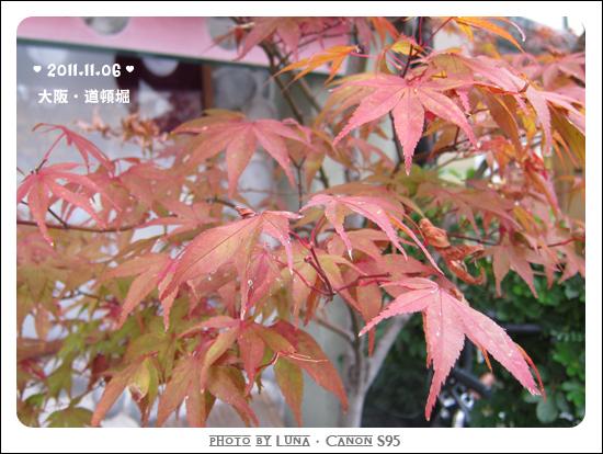 20111106-53道頓堀.jpg