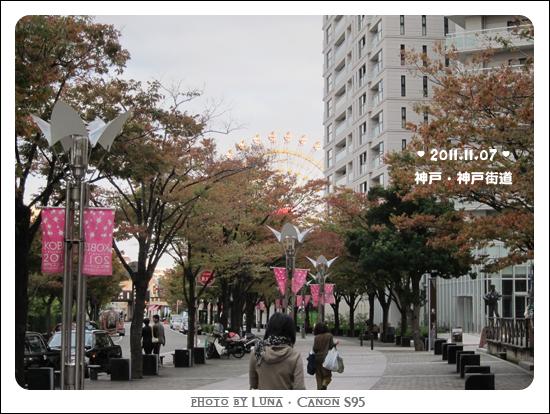20111107-69神戶街道
